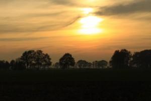 Die Nutzung der Solarenergie ist auch in unserer Region überaus populär. SANIWOLF installiert thermische Solaranlagen und Photovoltaik. Ihr Fachbetrieb in der Region Reutlingen, Tübingen, Nürtingen